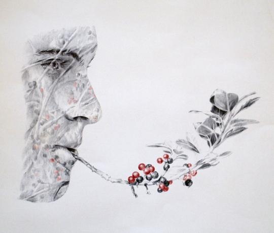 Autostop 3: Pipa de la paz – Bolígrafo sobre papel – 65 x 50 cm. – 2012