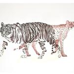tigreprint